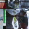 ویدئو روش جدید کاشت دندان با تکنولوژی سه بعدی
