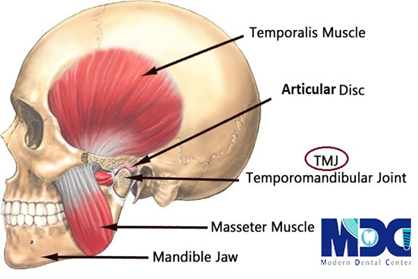 TMJ-چیست-کلینیک-دندانپزشکی-مدرن